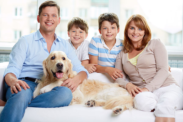 Tips For Family Dental Care  From A Top Albany, NY, Dentist